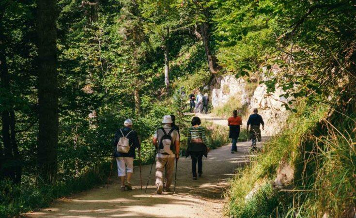 wandelen in de Ardennen