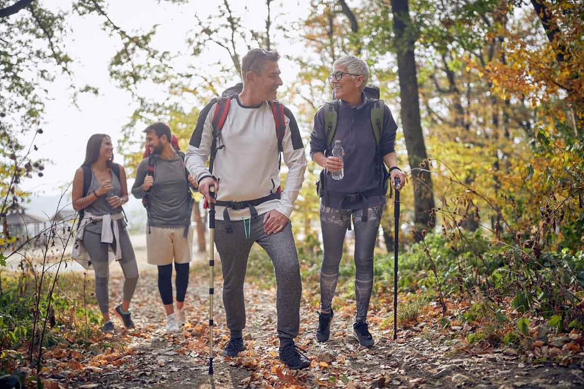 wandeling in het bos Ardennen